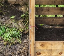 How to Turn Kitchen Scraps into Rich Compost