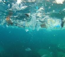 Plastic Pollution at Four Coastal California Hotspots Violates Clean Water Act