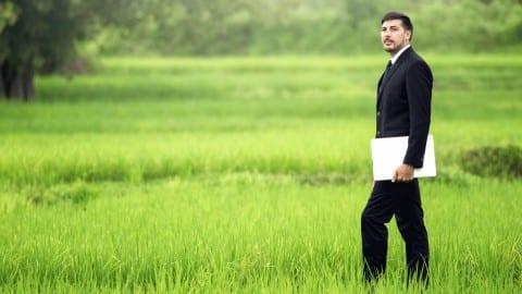 Environmental management career